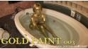 GOLD PAINT 003