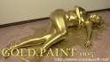 GOLD PAINT 005