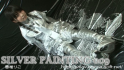 SILVER PAINTING 009