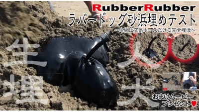 ラバードッグ砂浜埋めテスト
