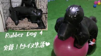 Rubber Dog4 (実録!ヒトイヌ生活)