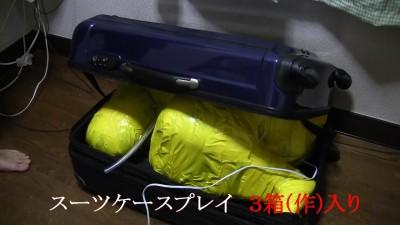 スーツケースプレイ 1.2.3セット